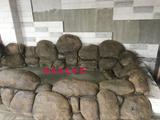 南京浴场假山塑石小品